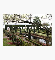 The Italian Garden Photographic Print