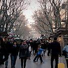 La Ramblas - Barcelona  by rsangsterkelly