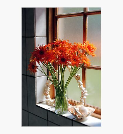 THE BATHROOM WINDOW Photographic Print
