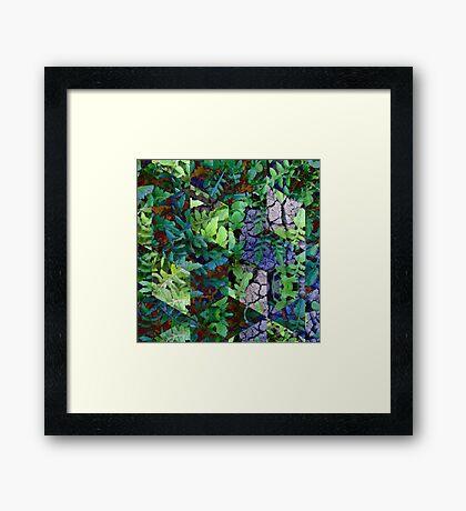 Super Nature No.1 Framed Print