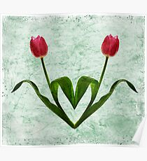Tulip Heart Poster