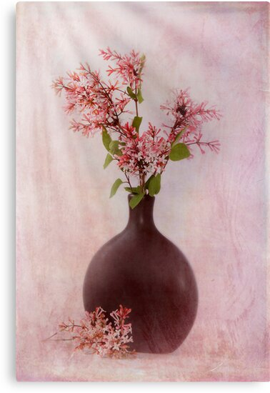 Study In Pink by Patricia Jacobs DPAGB LRPS BPE4