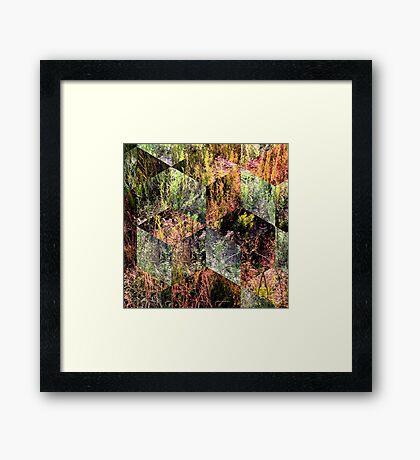Super Natural No.2 Framed Print