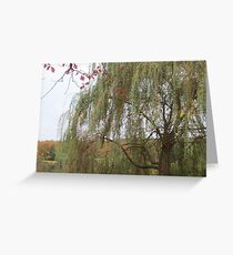 Under The Willow Greeting Card