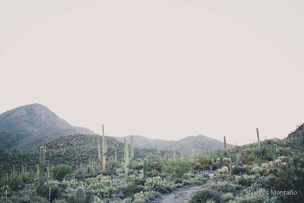 Minimal desert by Nieves Montaño