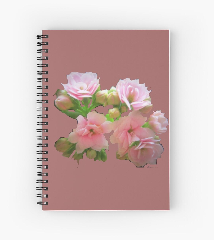 pink flowers by MaviSchirripa