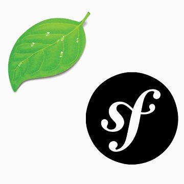 Coda and Symfony by iepster