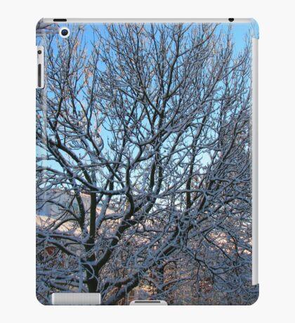 Winter Sunshine iPad-Hülle & Klebefolie