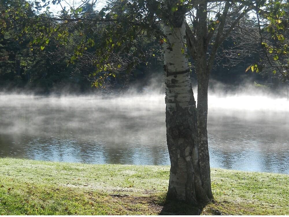 Mist rising over summer lake by beckalbright