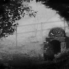 Ladywell In The Mist by Samantha Higgs