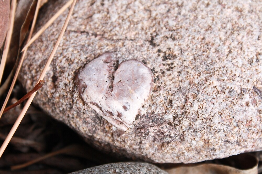 Heart in a rock place by DawnSuzette