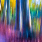Abstract Nature by T M B