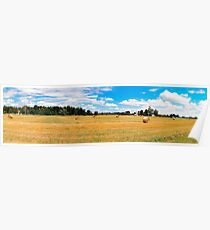 Panorama_Mown field Poster
