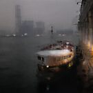First time I saw Hong Kong... by Nikolay Semyonov