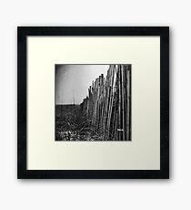 Quiescence Framed Print
