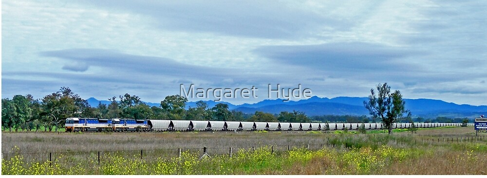 Coal Train, Scone, New South Wales, Australia (panorama) by Margaret  Hyde