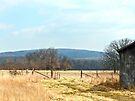 Country Mountain Scene by FrankieCat