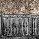 Fenced In by Leon Herbert
