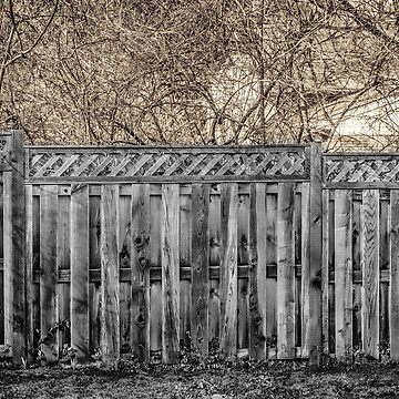 Fenced In by leonherbert