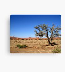 Sossusvlei landscape, Namibia, Africa Canvas Print