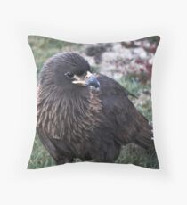 Striated Caracara ~ one of the worlds rarest raptors Throw Pillow