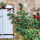 Roses against old brick wall - France by Marlene Hielema