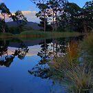 Captain Cook Creek HDR - Adventure Bay, Bruny Island, Tasmania by PC1134