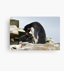 "Rockhopper Penguins ~ ""Love Is"" Canvas Print"