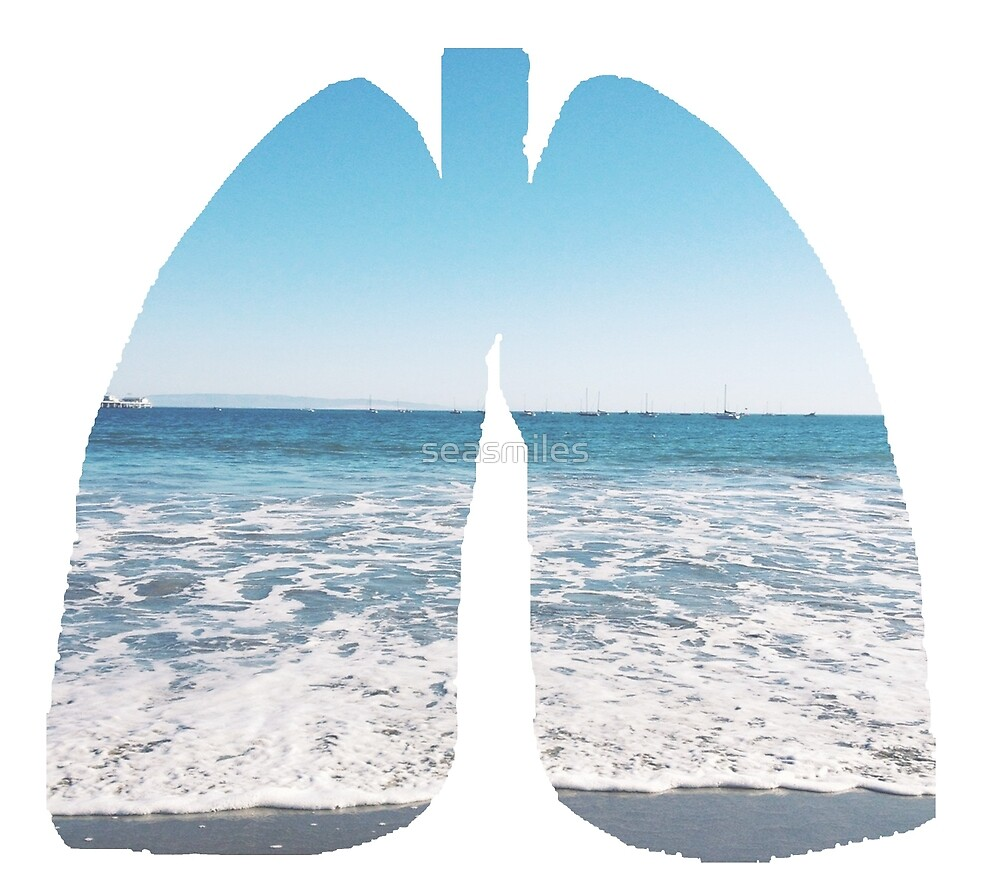 Lungs by seasmiles