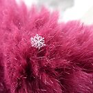 Snowflake on fur by Kiriel