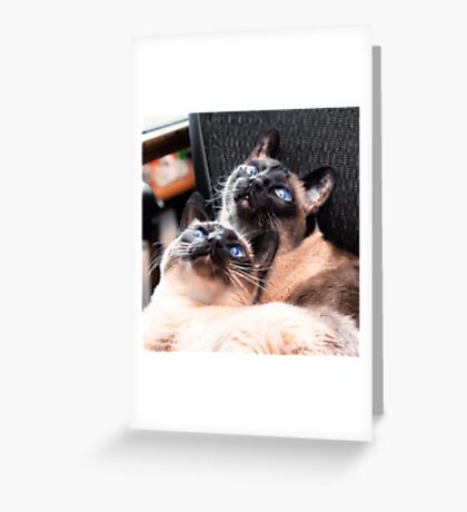 Things Are Looking Up! Greeting Card
