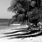 Island Vacationland by IrisGelbart