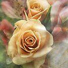 Tangerine Roses by vigor