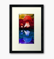 Colour fungi Framed Print