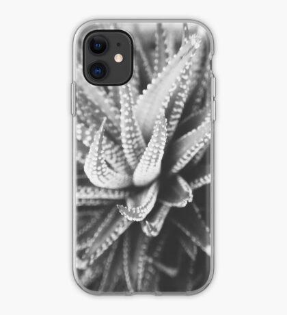 Cactus Species iPhone Case