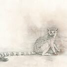 Curious Lemur by Kirsten Glenwright