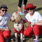 Melanoma March Brisbane 2014 #3 by Ian McKenzie