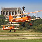 Wingwalkers - Shoreham - 2013 by Colin  Williams Photography