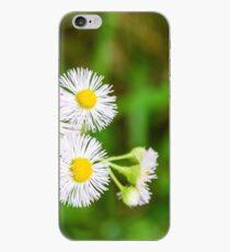 Daisy Fleabane iPhone Case