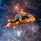 Pizza Sloth In Space by vigilanteartist