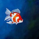 Ryukin Goldfish 2 by Robert David Gellion