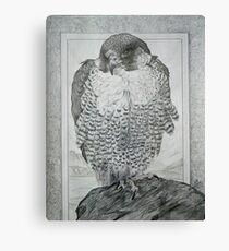 Peragrin Falkon. Canvas Print