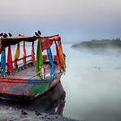 Colours in the mist by DaveBassett