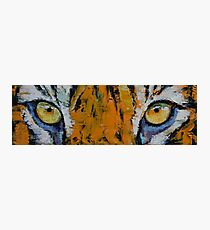 Lámina fotográfica Tiger Eyes