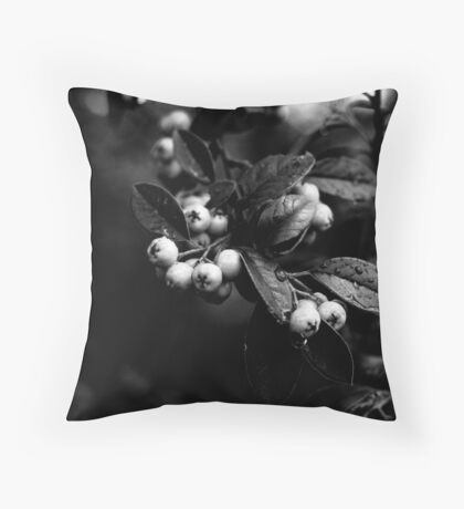 Cotoneaster Berries Throw Pillow