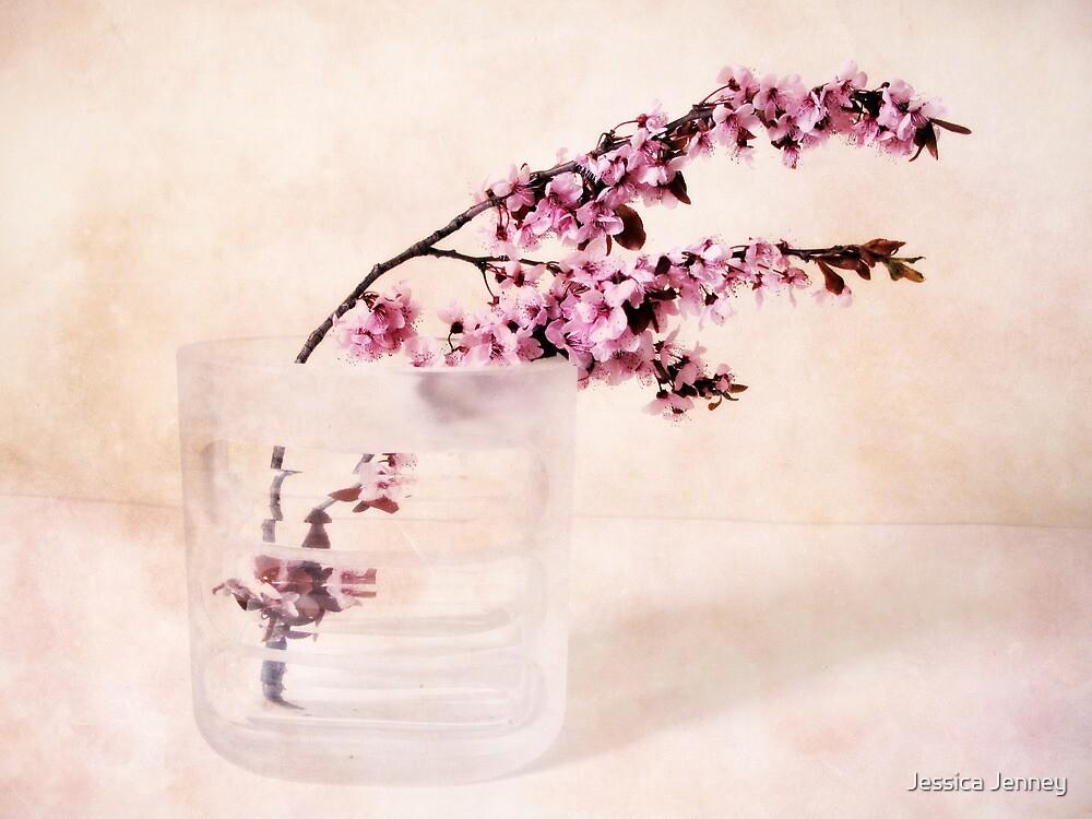 Cherry Blossom by Jessica Jenney
