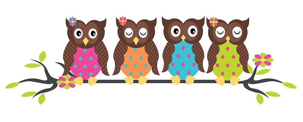 Owls by Virginia <3