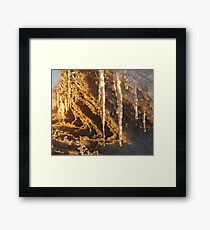 Sunset Icicles Framed Print
