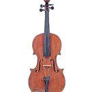 A Violin by Jennifer Gibson
