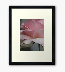 Blossom_1323 Framed Print